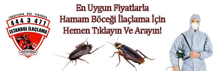 hamam-böceği-ilaclama, hamam-böceği-ilaçlama