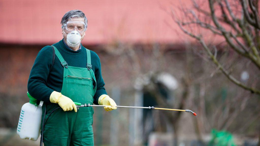 ataşehir böcek ilaçlama, atasehir-bocek-ilaclama
