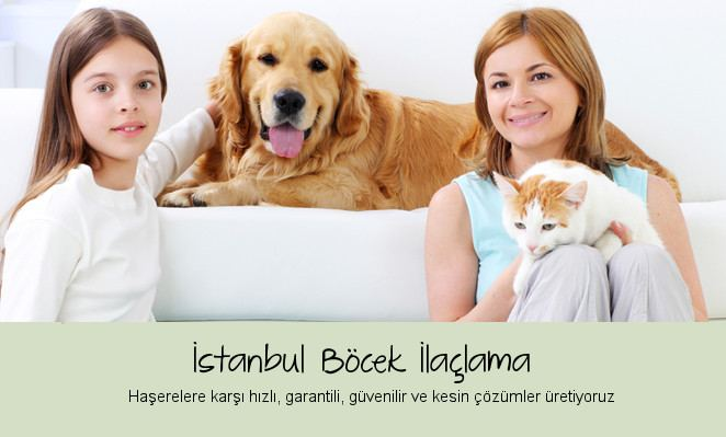 istanbul böcek ilaçlama ana sayfa resmi