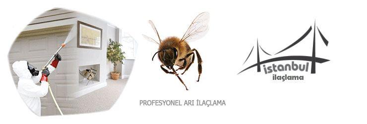 Arı ilaçlama
