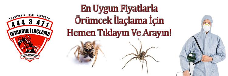 örümcek-ilaçlama, örümcek