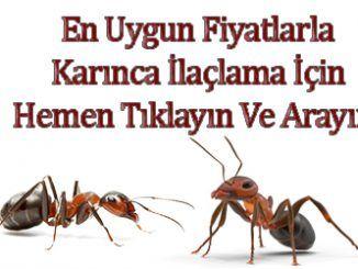 karınca, karınca-ilaçlama