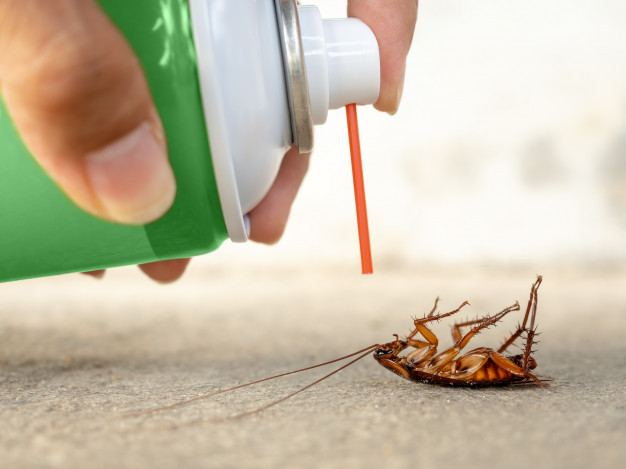 böcek-ilaçlama-nasıl-yapılır